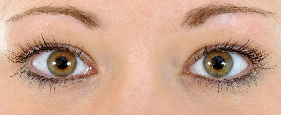Aufbau des Auges: So funktioniert der Sehsinn