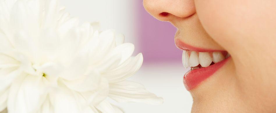 Von Stinknase bis Nasenkrebs: Ursachen, Symptome & Behandlung häufiger Nasen-Erkrankungen