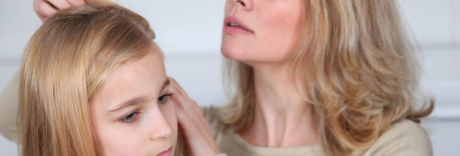 Läuse erkennen: Das kennzeichnet die Kopflaus