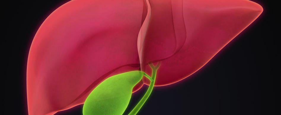 Gallenblasenkrebs: Ursachen, Risikofaktoren und Symptome