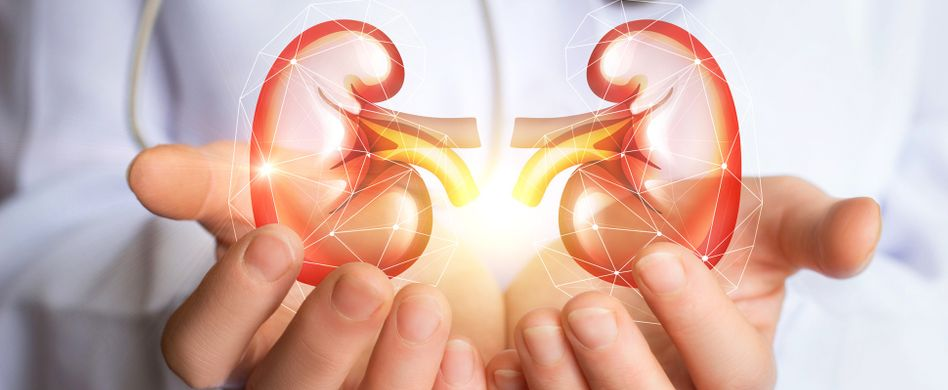 Nebenniereninsuffizienz: Symptome, Ursache und Therapie