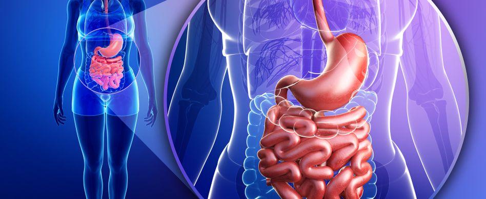 Darmerkrankungen: Verdauungsprobleme sind ein Warnsignal