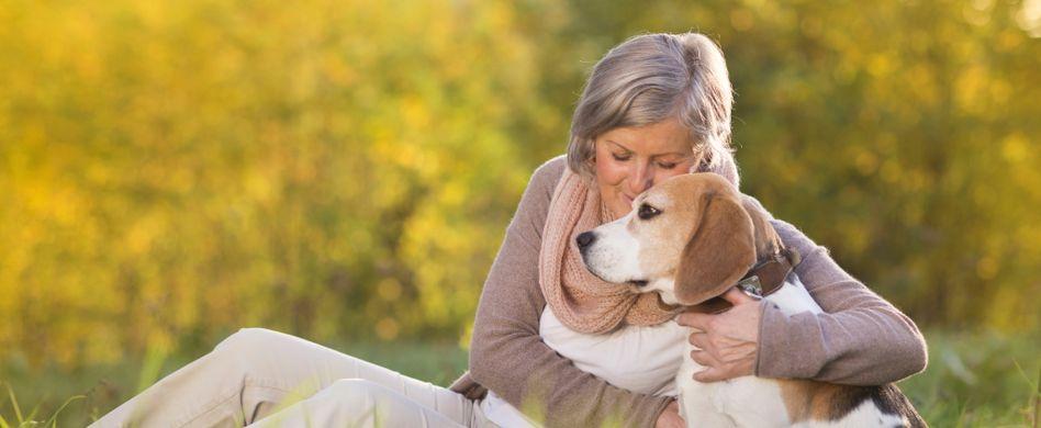 Therapiehund: Mit dem Hund Angststörung behandeln