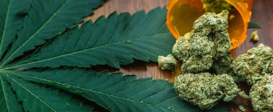 Langzeitfolgen von Cannabis