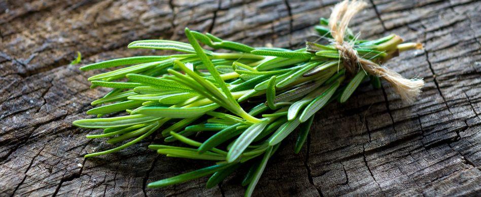 Heilpflanze Rosmarin: Lindert Verdauungsbeschwerden