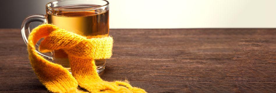 Heilpflanzen für das Immunsystem: 3 Tees lindern Erkältungsbeschwerden