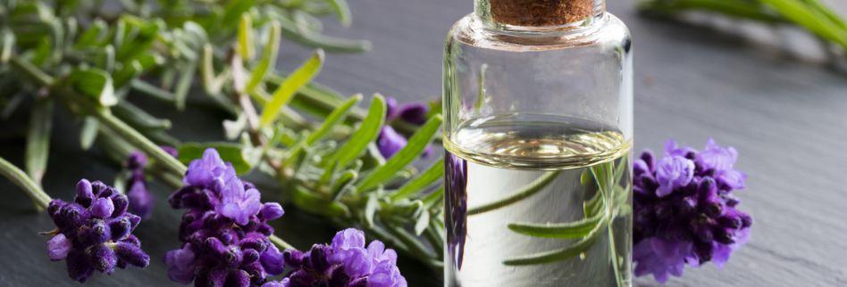 Lavendelöl: Wirkung des duftenden Öls