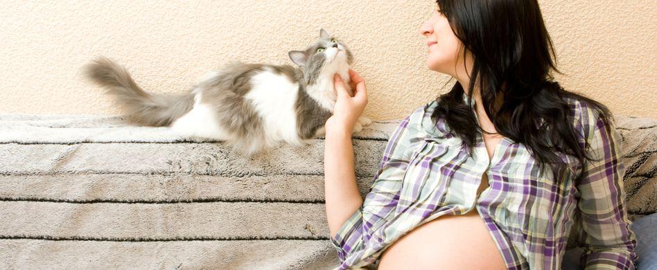 Toxoplasmose: Gefährlich in der Schwangerschaft