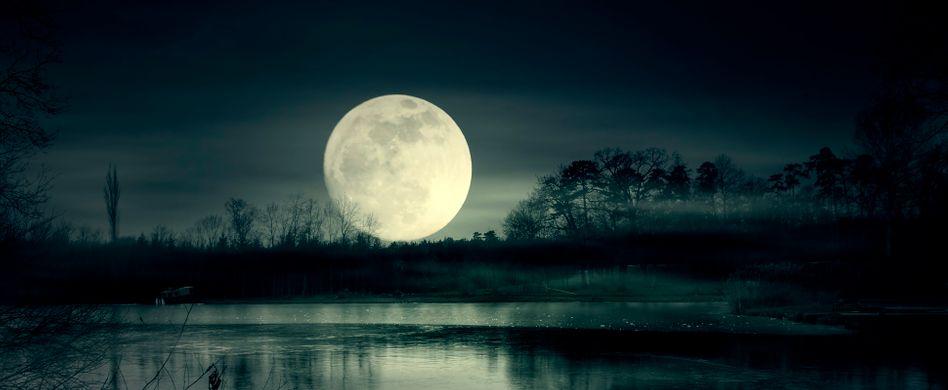 Xeroderma pigmentosum: Was ist die Mondscheinkrankheit?