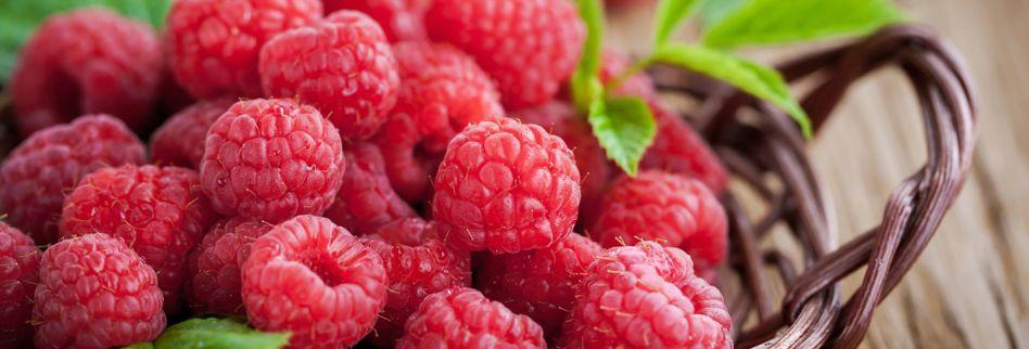 Himbeeren: Wie gesund sind die leckeren Beeren?
