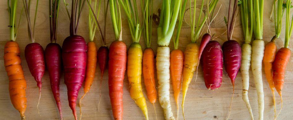 Wurzelgemüse: Diese Arten sind lecker und gesund!