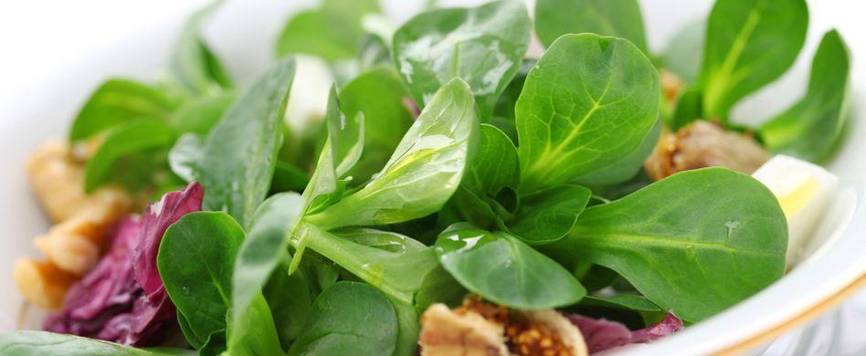 Darum ist Feldsalat gesund: 3 Fakten