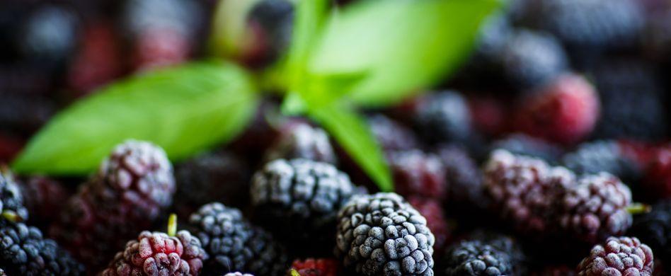 Maulbeere - eine echte Superfrucht