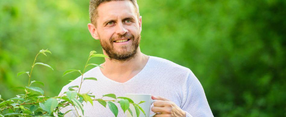 Grüner Tee: Wirkung des wohltuenden Heißgetränks