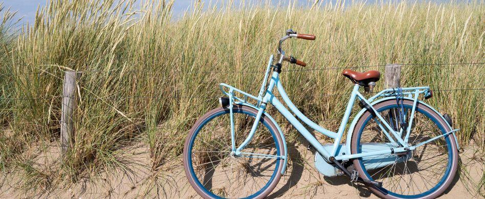 Fahrradtransport: Sicher unterwegs mit dem Rad in Bus, Bahn & Co.
