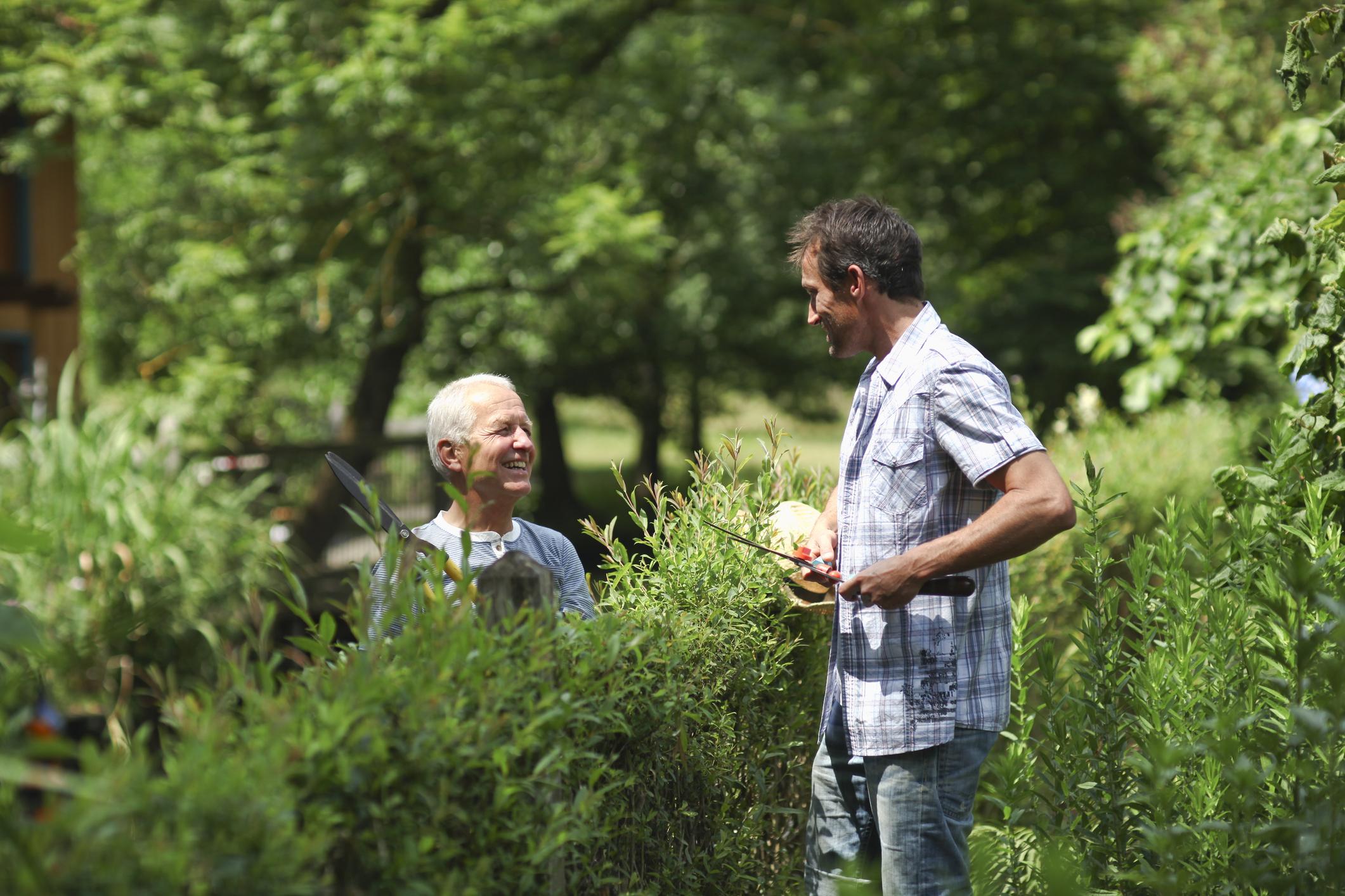 Streit Am Gartenzaun Wichtige Informationen Zum Nachbarschaftsrecht