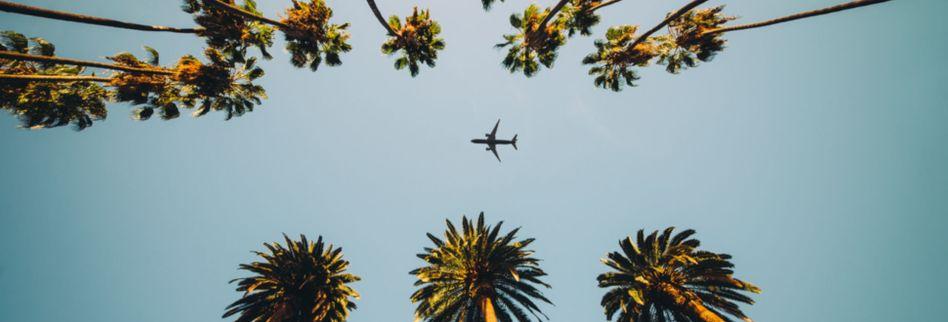 Luxus, Schweiß & Blasmusik: 6 kuriose Urteile aus dem Reiserecht