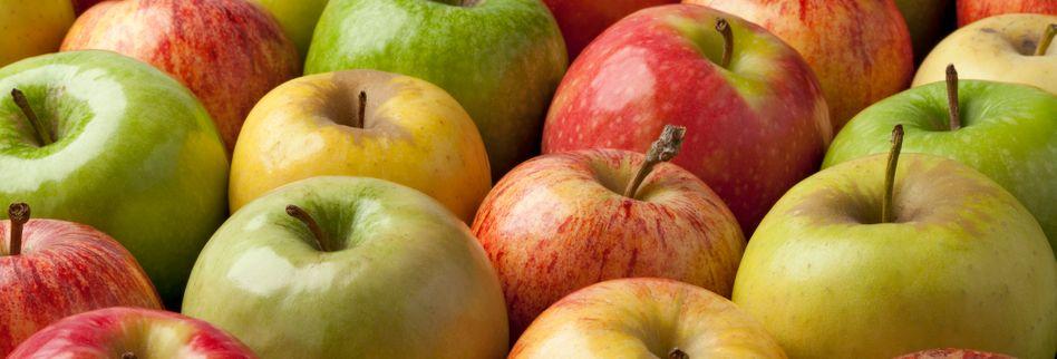 Äpfel richtig lagern: So bleibt das Obst lange frisch