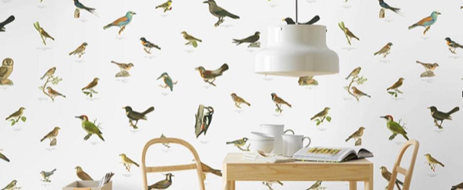 Wie man mit der richtigen Tapete die Wände verschönert
