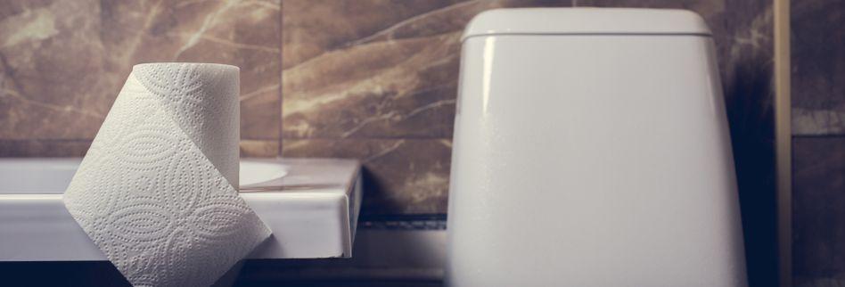 Spülkasten reparieren: Was tun, wenn er defekt ist?