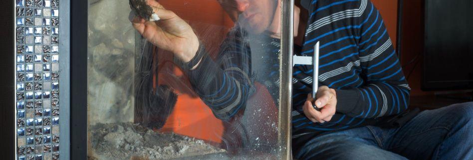 Kamin reinigen: Darauf sollten Sie achten