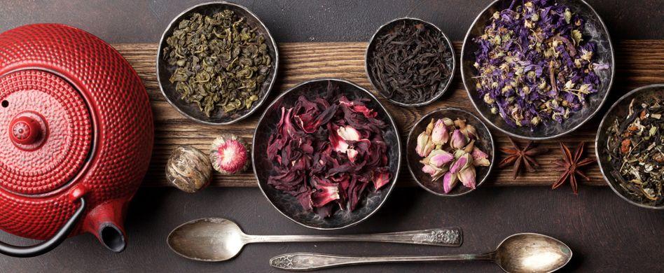 Tee fermentieren - gar nicht so schwer