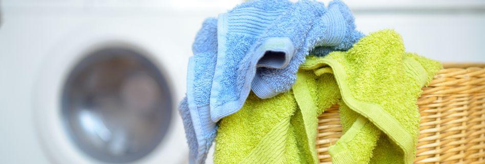 Richtig Wäsche waschen für Anfänger: die Basics