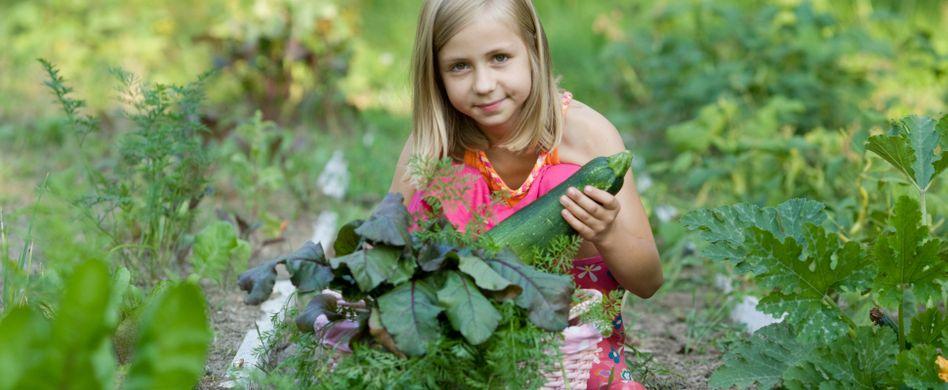 Kinderbeet anlegen: So geht kindgerechter Gartenspaß heute!