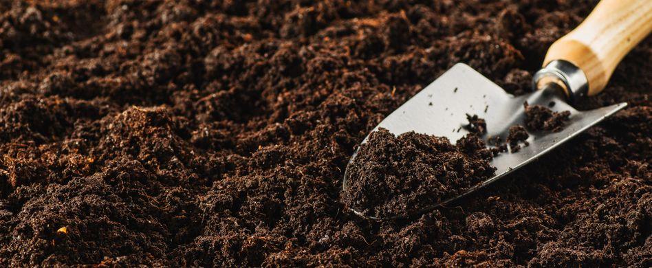 Blumenerde kaufen: So finden Sie die richtige Gartenerde