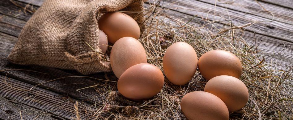Eierschalen als Dünger: Ein guter Kalklieferant