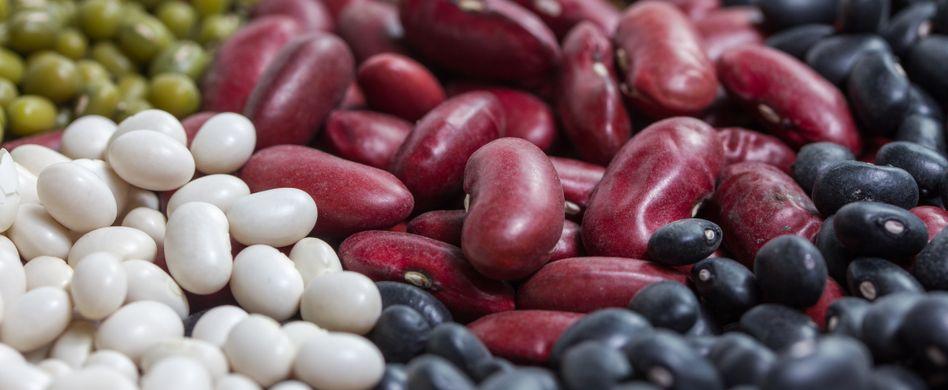 Gesund und lecker: 8 Bohnensorten in der Übersicht