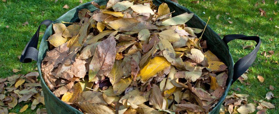 Gartenabfall entsorgen: Am besten mit Gartenabfallsack