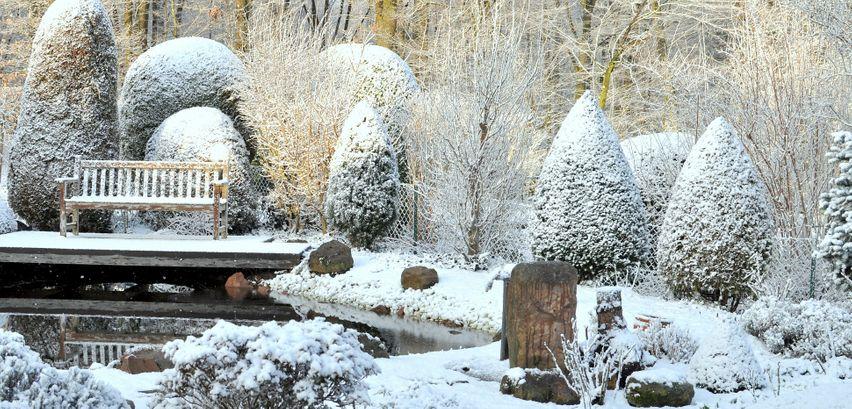 Oleander Winterfest Machen