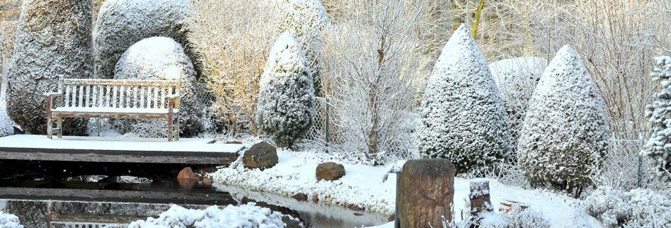 Garten winterfest machen: Das ist im Herbst zu tun