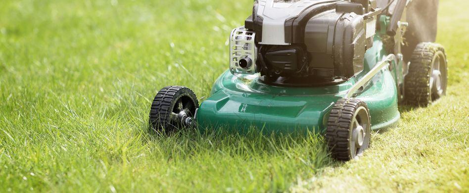 Alten Rasen richtig entfernen: So geht's