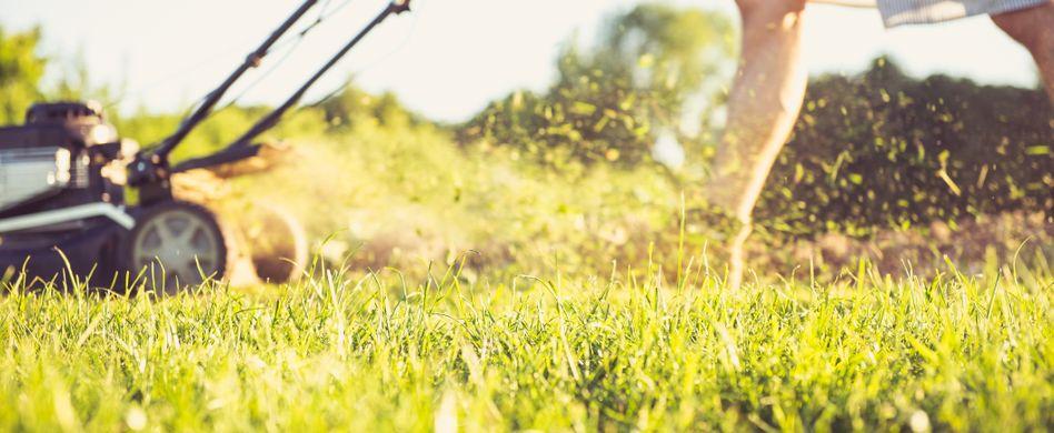 3 typische Fehler beim Rasenmähen