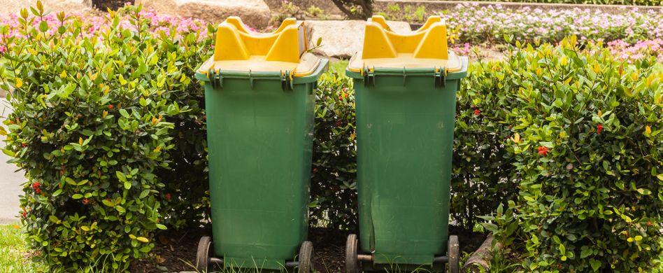 Mülltonnen verstecken: 4 Ideen, wie die Tonnen verschwinden