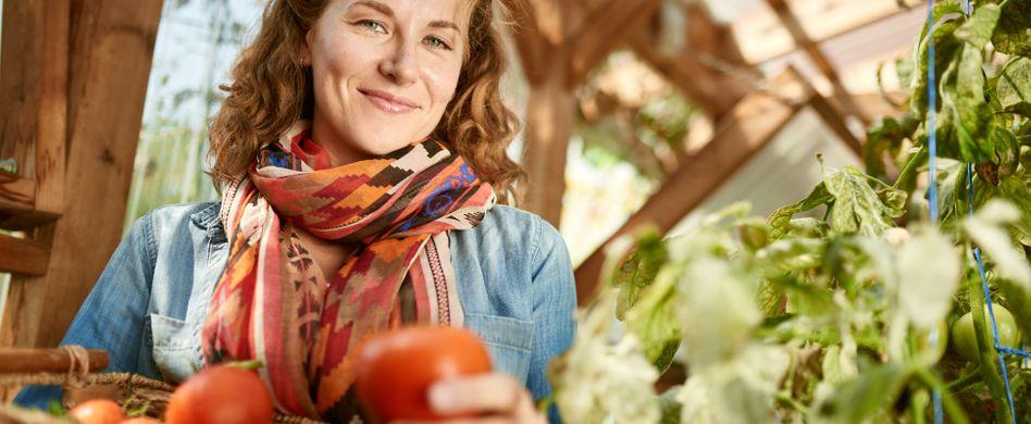 Tomatenhaus selber bauen: Effektiver Schutz fürs Gemüse