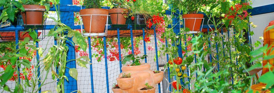 Balkongarten: 4 Tipps zum Urban-Gardening-Trend