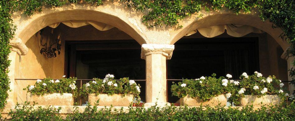 Nordbalkon: Passende Deko & Blumen für den schattigen Balkon