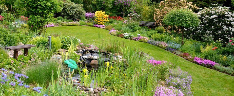 Gartenteich gestalten: Schöne Ideen und Bilder für Ihren Teich