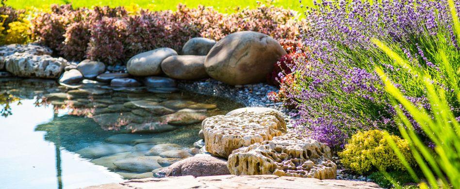 Teich anlegen: Tipps zur Planung der Wasserstelle im Garten
