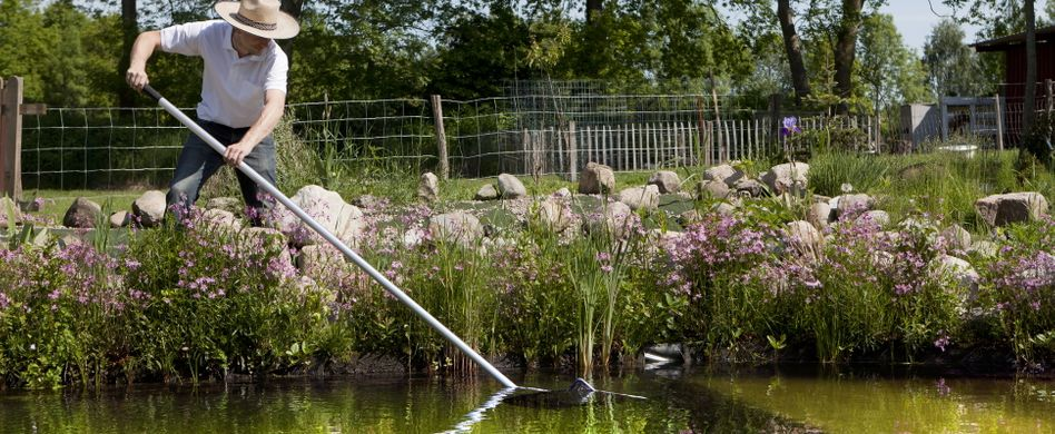 Teich reinigen: So wird Ihr Gartengewässer wieder sauber