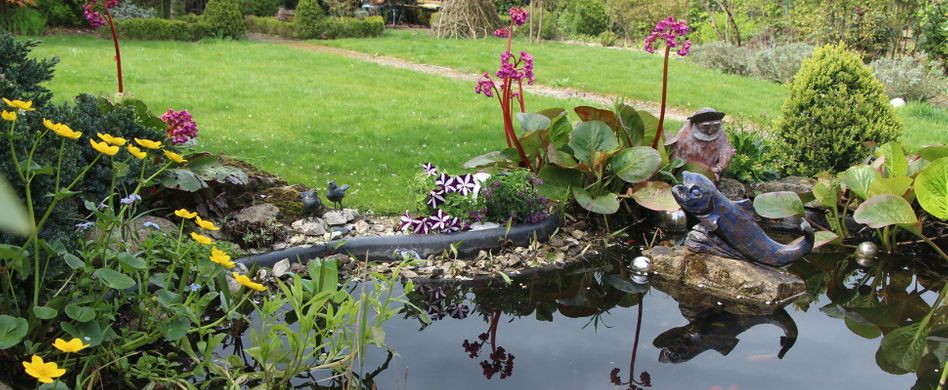 Fertigteich anlegen: Tipps zum Bau des kleinen Gartengewässers