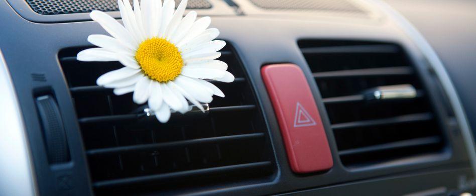 Auto-Lüftung oder Klimaanlage stinkt: So werden Sie den Mief los