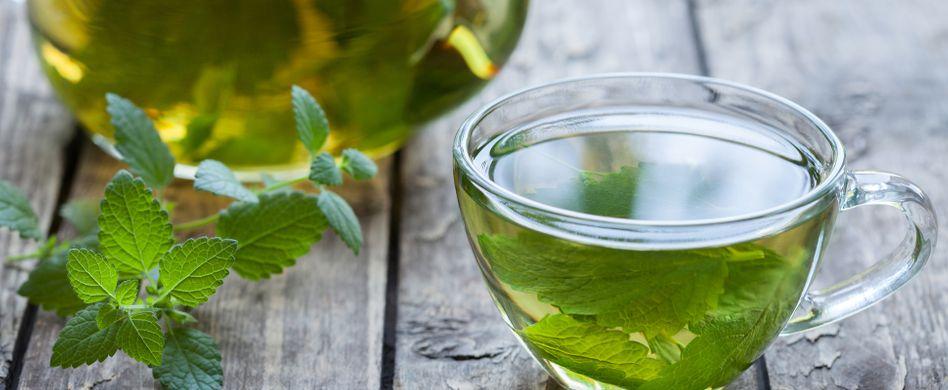 Frische Minze verwenden: So machen Sie Limonade und Tee selbst