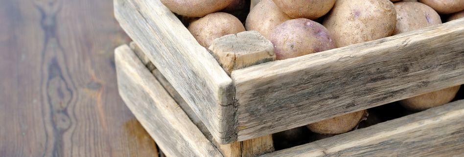 Kartoffeln lagern: Tipps für besonders lange Haltbarkeit