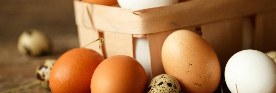 Sind die Eier noch gut? – Der ultimative Haltbarkeitstest