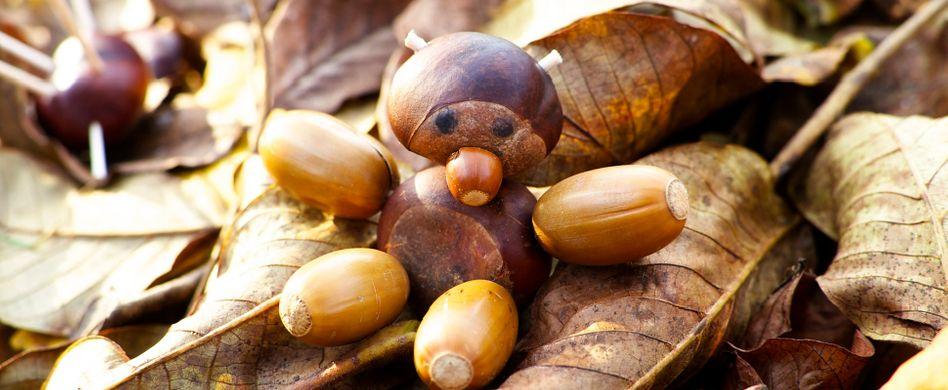 Basteln mit Naturmaterialien: Spaß mit Kastanien, Tannenzapfen und Co.
