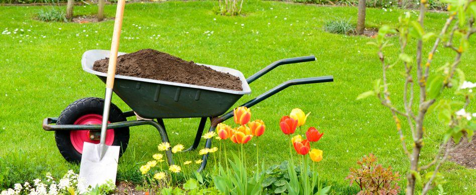 Gartenarbeiten im Mai: Bekämpfen Sie Ungeziefer zeitnah